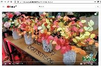 Ở nhà mùa Covid 19 làm lọ cành lá mùa thu cùng các con