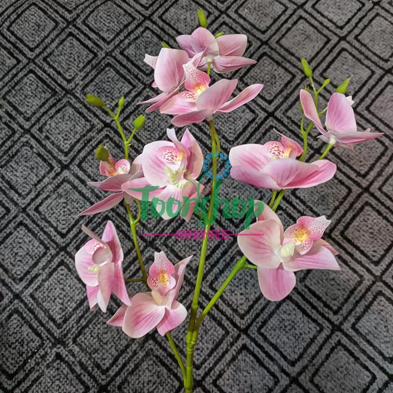 Cành lan hồ điệp 3 nhánh cánh nhỏ hồng phớt