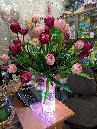 Bình hoa tulip vàng và hồng đậm 01