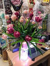 Bình hoa tulip vàng và hồng đậm 03