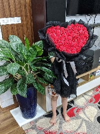 Bó hoa hồng sáp trái tim 50 bông đỏ
