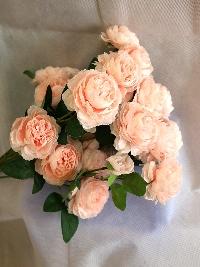 Cành hồng 2 bông 1 nụ màu hồng 03