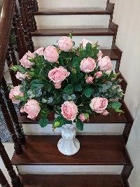 Chậu hoa hồng Như Ý 02