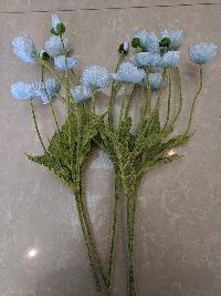 Cụm hoa anh túc xanh 01