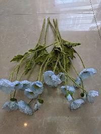 Cụm hoa anh túc xanh 02