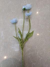 Cụm hoa anh túc xanh 04