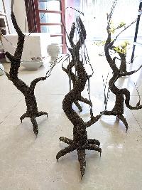 Gốc cây bonsai cỡ trung bình 01